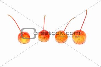 Four crab apples