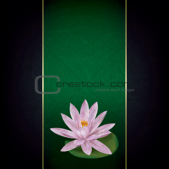 abstract grunge floral background with lotus