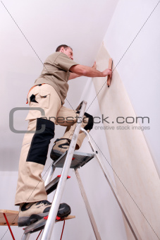 Wall papering man