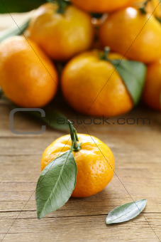 ripe juicy tangerine, orange mandarin  with leaves on  wooden table