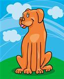 boxer dog cartoon illustration