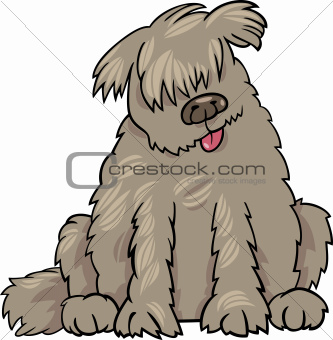 newfoundland dog cartoon illustration