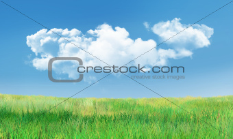 Cumulus Clouds and Grass Landscape