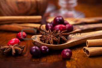 Ingredients for cranberry hot mulled wine