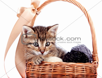 Striped kitten in a basket with woolen balls