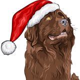 vector dog German shepherd in a Christmas hat of Santa Claus