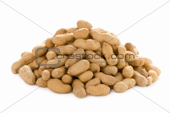 monkey nuts isolated