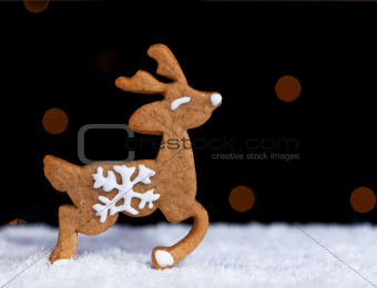 Gingerbread cookie deer