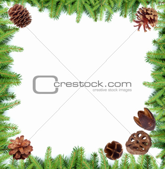 Fir tree branches frame