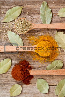 three spices in wooden spoons and bay leaves