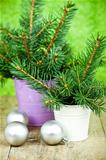 buckets with christmas fir tree and decorations
