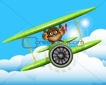monkey on a plane