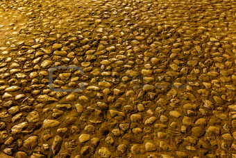 Illuminated Golden Cobblestones in Makarska, Croatia