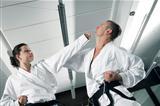 martial arts masters