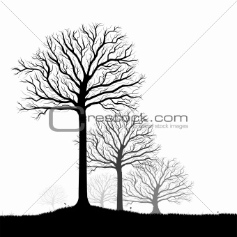 Trees Silhouette, Black and White Vector Shape and Grass