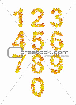 Autumn orange and yellow leaves numbers. Vector illustration.