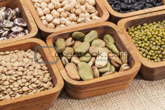 bean and lentil set