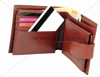 Money and credit card in wallet