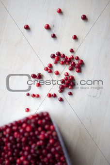 Fresh Lingonberries