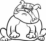 english bulldog dog cartoon for coloring book
