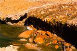 rio Tinto in Niebla