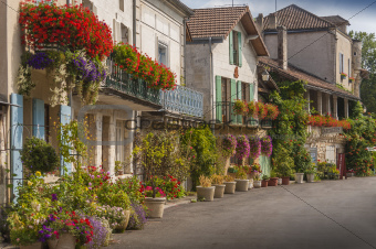 Houses covered in flowers