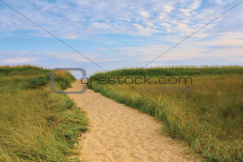 Dune Path to the Beach