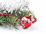 red decorations  and fir branch