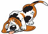 cartoon basset hound