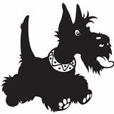 cartoon scottish terrier black white