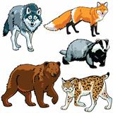 set of predators