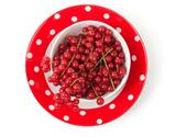 red currant on a bright plate