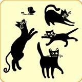 Four Black Cats playing