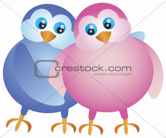 Valentines Day Lovebird Pair Illustration