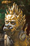 Bronze lion in China Emperor garden