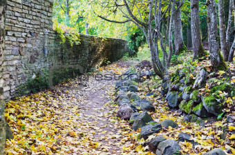 Footpath in fallen down leaves in autumn park