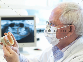 senior dentsit