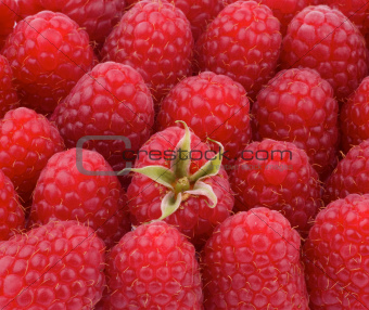 Background of Raspberries