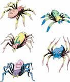 Set of spider tattoos