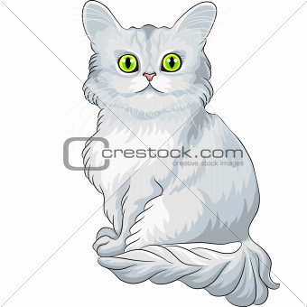 Vector cute blue Tiffany cat sitting