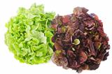 red and green salads