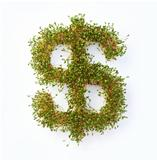 A dollar sign made from grass with a white background