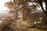 Dawn along the River Blyth, Suffolk, England