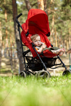 Kid in the buggy