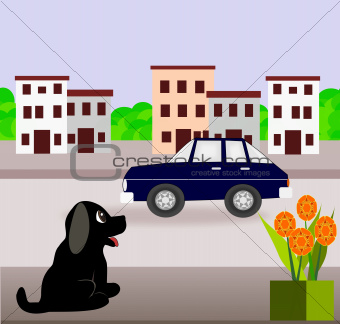 Puppy and Car