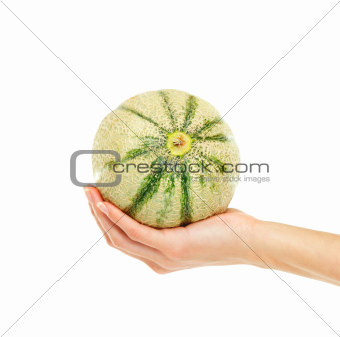 A ripe and juicy melon