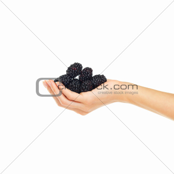 Delicious and juicy blackberries