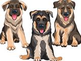 Vector set smiling puppies dog German shepherd