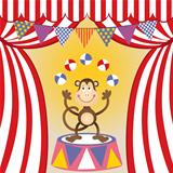 Circus monkey juggling