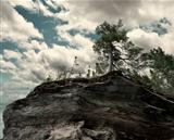 Trees On A Rocky Cliff